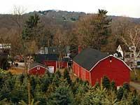 Jones Family Farm Shelton Connecticut Pictures