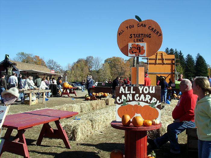 Jones Family Pumpkin Farm In Shelton Ct